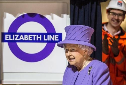 Queen Elizabeth royal violet